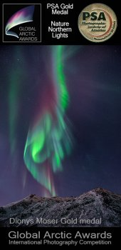 A Winnerphoto Dionys Moser Nothernlights PSA Goldmedal
