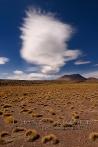 Federwolke über der Puna