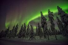 Finnland Wintertraum_14