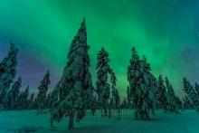 Finnland Wintertraum_17