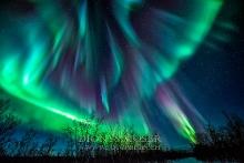 Finnland Wintertraum_22