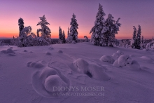 Finnland Wintertraum_23