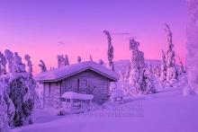 Finnland Wintertraum_2