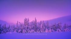 Finnland Wintertraum_4