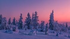 Finnland Wintertraum_5