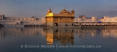 Holi & Holla Mohalla Festivals