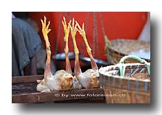 Hühner am Markt